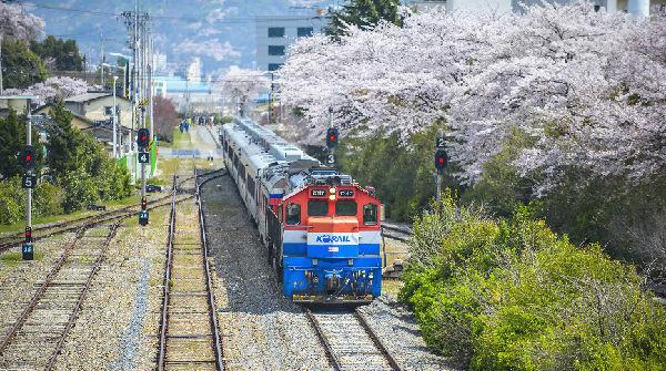 韩国火车KTX