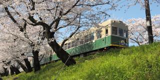 日本旅游交通劵攻略