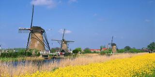 荷兰旅行APP推荐