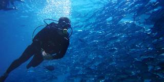 马来西亚潜水攻略