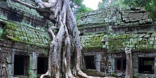 柬埔寨实用APP推荐