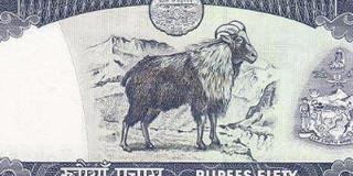 尼泊尔货币兑换攻略